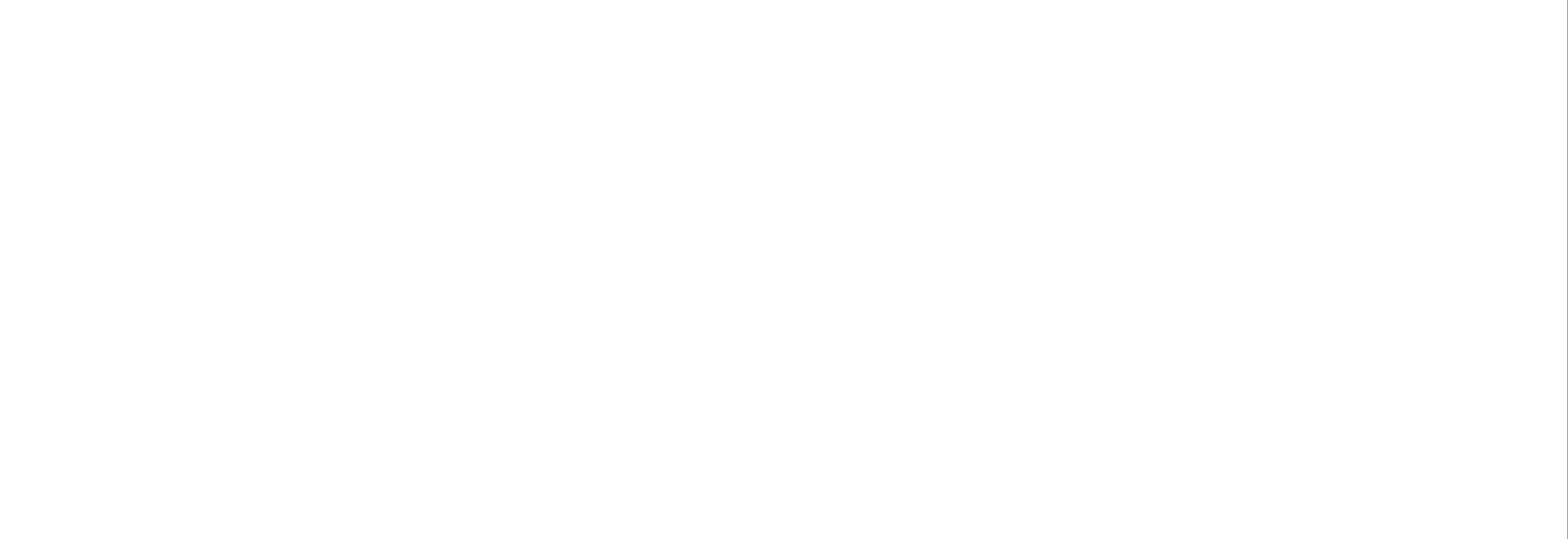 logo WALTHAM